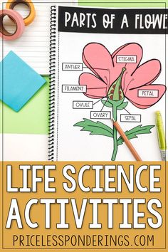 Help your elementary students explore, learn, and write about parts of a flower and pollination. Check out these engaging lesson plans and worksheets, great for a third grade science class. Science Resources, Science Activities, Second Grade Science, Parts Of A Flower, Interactive Notebooks, Life Science, Lesson Plans, Vocabulary, Worksheets