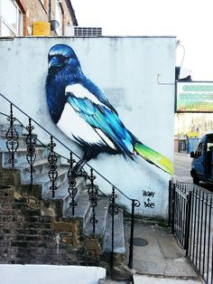 street art magpie