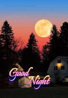 New Good Night Images, Good Night All, Good Night Flowers, Beautiful Good Night Images, Good Night Wishes, Good Night Sweet Dreams, Good Morning Images, Good Morning In Hindi, Good Night Hindi Quotes