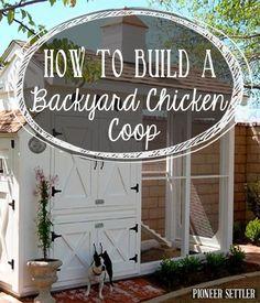 DIY Chicken Coop Plans | How To Build A Coop and Raise Chickens For Self Reliance By PioneerSettler.com. http://pioneersettler.com/build-backyard-chicken-coop/