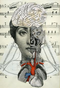 I like combining found and vintage objects, images and text to make assemblages and collages. I like to incorporate anatomical and scientific themes in my collages. Soul Collage, Mixed Media Collage, Collage Art, Collage Design, Photomontage, Collages, Psy Art, Anatomy Art, Brain Anatomy