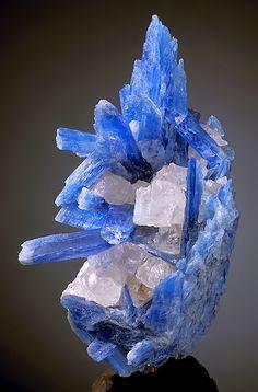 Aesthetic cluster of translucent to gemmy blue Kyanite crystals with Quartz! . From Barra de Salinas, Coronel Murta, Jequitinhonha Valley, Minas Gerais,