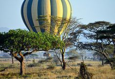 Hot air balloon safaris over Serengeti National Park in Tanzania are just one of the world's top 10 aerial tours.