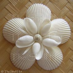Seashell Snowflake Christmas Ornament Star Shell Flower Tropical Beach Nautical Tropical Beach Shore Gift Seaside - The Effective Pictures We Offer You About clay crafts A quality picture can tell you many things. Seashell Christmas Ornaments, Coastal Christmas, Christmas Crafts, Christmas Decorations, Beach Ornaments, Grinch Christmas, Snowman Ornaments, Handmade Christmas, Christmas Holidays