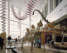 Science Museum of Minnesota, St. Paul, MN.