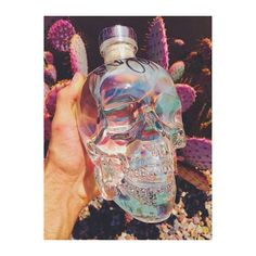 Our fan photo of the week is from @jongliagoro. Have you got a signed Crystal Head Vodka bottle from Dan Aykroyd?