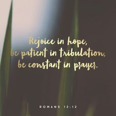 Today's Verse of the Day: Romans 12:12 ❤