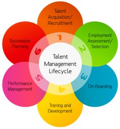 What is the talent management life cycle? Find out more here! http://www.cppblogcentral.com/cpp-connect/what-is-the-talent-management-life-cycle/ #HR #talentmanagement