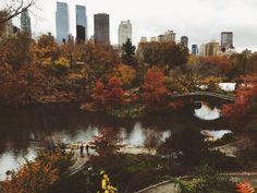 hellogoldenjules: Central Park yesterday