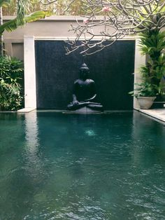 Zen style elegant pond for an outdoor garden landscape!