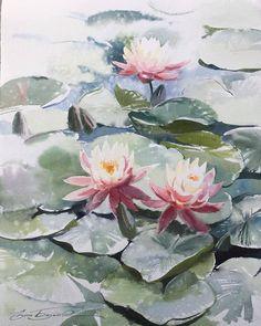 Акварель Watercolor Rose, Watercolor Artwork, Watercolor Artists, Guache, Plant Illustration, Painting Inspiration, Flower Art, Pastel, Alcohol Ink Painting