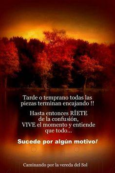 Todo sucede por algún motivo ! https://www.facebook.com/pages/Caminando-por-la-vereda-del-Sol/295731910617292?ref=hl