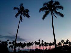 アラモアナビーチパークの幻想的なサンセット。 金曜に加え、火曜も花火が楽しめるようになりましたね。 http://www.hawaiist.net/