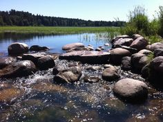 Mississippi Headwaters in Itasca State Park