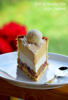 Apricot, white chocolate, and vanilla mousse cake. White Chocolate Mousse Cake, Vanilla Mousse, Romanian Food, Recipe For 4, Yummy Cakes, No Bake Cake, Beautiful Cakes, Cheesecake, Ice Cream