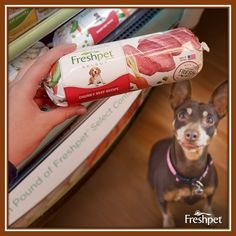 The #Freshpet Select #ChunkyBeef recipe has gotten great #FreshpetReviews. Grab a pack at #Walmart to try.