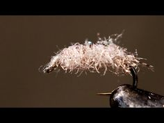 Josh Stanish Carpet Sowbug - 11:50. A fly tying video showing Josh Stanish tie a sowbug nymph pattern using some innovative fly tying materials.