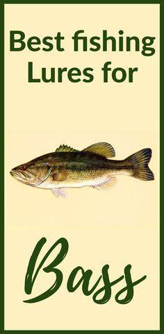 Best fishing lures for bass fishing lures bass bass fishing tips 9 basics all anglers need to know Kayak Bass Fishing, Best Fishing Lures, Trout Fishing Tips, Walleye Fishing, Fishing Tackle, Fishing Stuff, Fishing Knots, Carp Fishing, Saltwater Fishing
