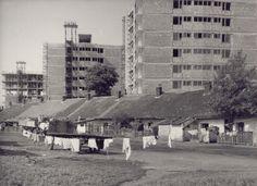 A hernyóktól a bérházakig – így épült meg a Selyemrét Budapest, Hungary, Photo Wall, History, Photograph, Historia