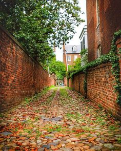 We rounded up our top Instagram spots in Old Town Alexandria, Virginia, with some of our favorite examples from local Instagrammers. Alexandria Virginia, Old Town Alexandria, Travel Sights, Dc Travel, Washington Dc Location, Washington State, Weekend Trips, Art Design, Architecture