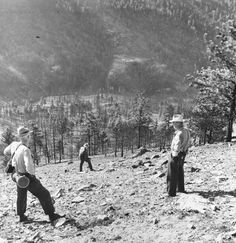 Photograph of the Mann Gulch investigation team beginning their work. They are standing where the only survivor, Dodge, escaped being overrun by Fire, during a Blow up. This US Government Photo is in public domain,