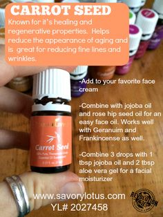 "Figure out more information on ""skin cream essential oils young living"". Check out our web site. Carrot Seed Essential Oil, Essential Oils 101, Essential Oil Blends, Chamomile Essential Oil, Young Living Oils, Young Living Essential Oils, Young Living Hair, Slow Cosmetic, Aromatherapy Oils"