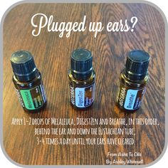 Plugged Ears? Try this blend! Follow me on Instagram: https://www.instagram.com/fromashstooilsbyashley/ Order your oils at: http://mydoterra.com/ashleywhitesell