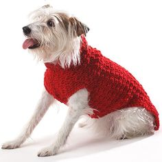 The perfect sweater for your favorite furry companion! Get the free pattern at Yarnspirations.com #nationaldogday #yarnspirations #crochet #crochetpattern #freepattern