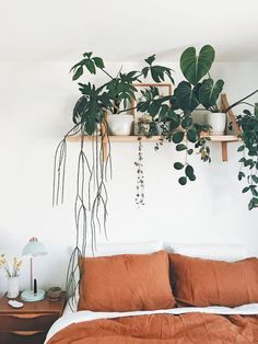 How to Create the Perfect Bedroom Plant Shelf - - In an excerpt from 'Indoor Jungle,' we learn how to make the perfect bedroom plant shelf that won't ruin your bedding. Decoration Bedroom, Room Decor Bedroom, Bed Room, 50s Bedroom, Bedroom Ideas, Home Decor Styles, Diy Home Decor, Home Decor Shops, House Plant Care