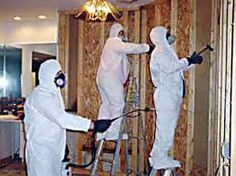 Properties of Mold and Its Effects on Humans in Homes and Workplaces. Get More on http://www.water-damage-services.com/mold-inspection-west-palm-beach