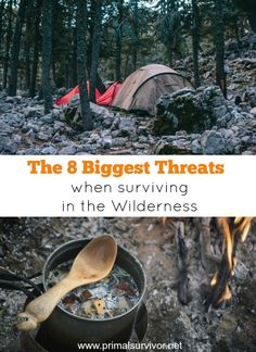8 Biggest Threats When Surviving In the Wilderness. Here is what you should really be worried about if you ever have to survive outdoors. Things to prepare for when SHTF and you have to escape into the wilderness.
