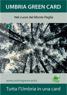 Monte Peglia