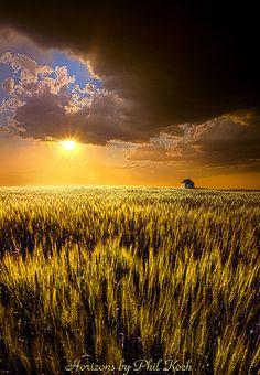 Praire Land  by Phil~Koch, via Flickr