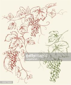 grape branches corner art - Google Search