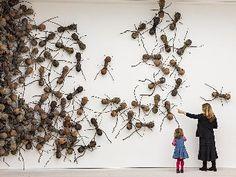 Ant installation by Rafael Gomezbarros