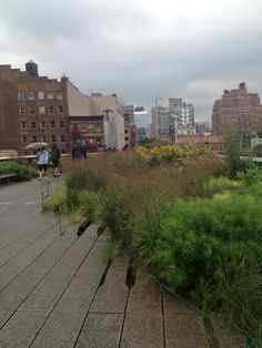 The High Line NYC High Line, Street View, Nyc, Travel, Viajes, Destinations, Traveling, Trips, New York