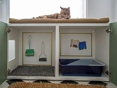 Cats make great companions, but the odor and mess of their litter box isn't always ideal. See how we turned a standard laminate cabinet into a kitty station complete with litter box containment, storage and an all-important nap spot.