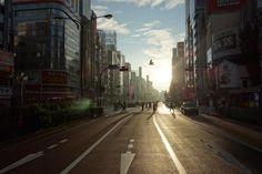 Shinjuku in great light near dawn - accidentally great photo with bird [OC][5472x3648]
