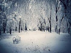 AllroundRow: Märchenhafte Schnee und Winter Fotografie