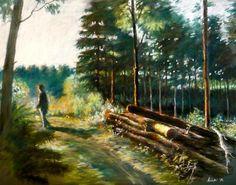 Hajnal az erdőn