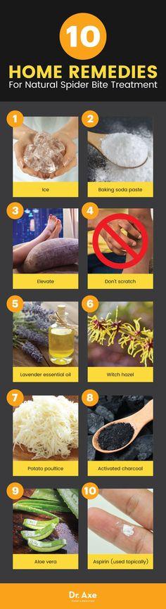 Natural spider bite treatment: 10 home remedies