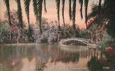 Vintage Echo Park postcard.