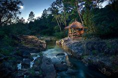 Belize jungle | Belize Jungle Lodges for Families - TravelMuse