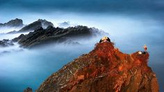 storks, top, mountain - http://www.wallpapers4u.org/storks-top-mountain/