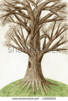 Gallery For > Tree Drawing Color Pencil