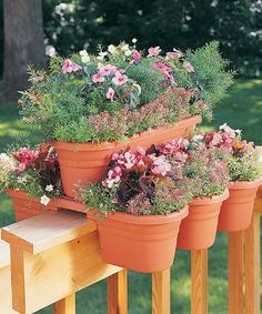 Milano Terra-cotta Rail Planter - Set Of Four