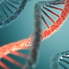 MTHFR Mutation Symptoms, Diagnoses