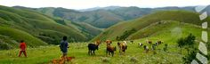 Bulembu, Swaziland ! http://flightsafrica12.blogspot.com/2015/08/plane-tickets-africa.html