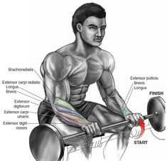 The 12 Best Bicep and Tricep Exercises for Mass - True Bodybuilding - Page 9 Fitness Gym, Tips Fitness, Fitness Motivation, Fitness Outfits, Fitness Women, Fitness Planner, Body Fitness, Female Fitness, Fitness Quotes