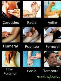 Pulsos💗 shared by UnaDepresivaMas on We Heart It Medical Students, Medical School, Nursing Students, Medicine Notes, Medical Anatomy, Medical Terminology, Nursing Notes, Med Student, Medical Science